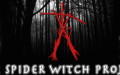 The spider witch project