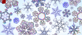 Snowflake, the symbol of winter: different sizes, infinite shapes